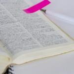 【暗記の仕方】超実践的な勉強法、英語学習にどうぞ